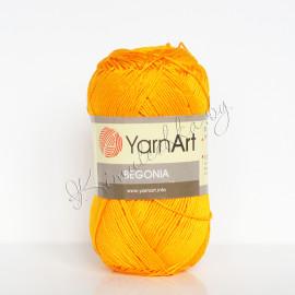 Begonia желтый (5307)