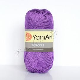 Begonia фиолетовый (6309)