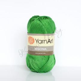 Begonia зеленый (6332)